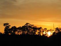 Tiempo tropical en la Florida Imágenes de archivo libres de regalías