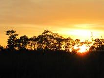 Tiempo tropical en la Florida Fotos de archivo libres de regalías