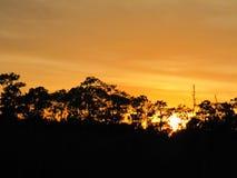 Tiempo tropical en la Florida Imagen de archivo libre de regalías