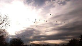 Tiempos del otoño Imagen de archivo libre de regalías