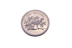 Tien dollars verzilveren muntstuk van Belize Stock Foto's