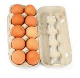 Tien eieren in een doos Stock Foto