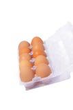 Tien eieren in plastic doos royalty-vrije stock fotografie
