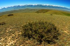 Tien-Shan Landscape. Typical landscape in Kyrgyzstan, At-Bashi sierra, Tien-Shan (used fish-eye lens Royalty Free Stock Photo