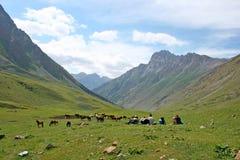 Tien Shan mountains, Kyrgyzstan Royalty Free Stock Photos