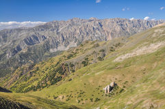Tien-Shan Stock Images