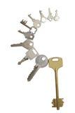 Tien verschillende sleutels Stock Afbeelding