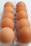 Tien verse eieren Stock Afbeeldingen