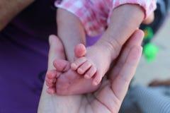 Tien vingers, kleine voeten van pasgeboren in de palm van uw hand, benen van pasgeboren baby in handen, Royalty-vrije Stock Foto