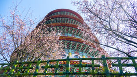Tien-Yuan temple with cherry blossom in New Taipei City, Taiwan Royalty Free Stock Image