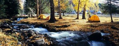 Tienda amarilla en bosque del otoño Foto de archivo libre de regalías