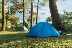 Tienda azul en el bosque en hierba imagen de archivo libre de regalías