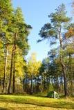 Tienda de campaña en Autumn Forest Fotografía de archivo