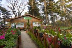 Tienda de flores del jardín Fotografía de archivo libre de regalías