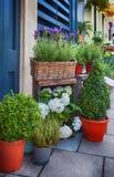 Tienda de la calle de las flores imagen de archivo libre de regalías