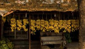 Tienda de la fruta del plátano en Kerala imagen de archivo
