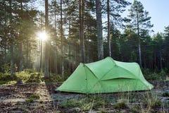 Tienda en bosque en la salida del sol Imagen de archivo libre de regalías