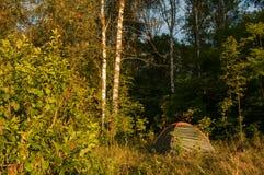 Tienda en un bosque, Imagenes de archivo