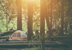 Tienda que acampa en el bosque Fotografía de archivo libre de regalías