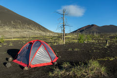 Tienda turística en la madera muerta - consecuencia del lanzamiento catastrófico de la ceniza durante la erupción del volcán en 1 fotografía de archivo