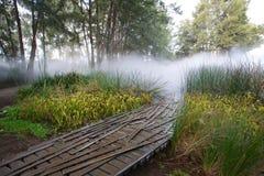 Tienda un puente sobre el descoloramiento en la niebla Fotos de archivo libres de regalías