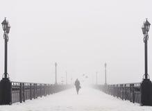 Tienda un puente sobre el paisaje de la ciudad en día de invierno nevoso de niebla Imágenes de archivo libres de regalías