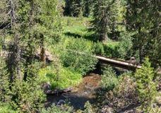 Tienda un puente sobre sobre la cala de las aguas termales, Warner Valley imágenes de archivo libres de regalías
