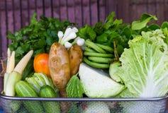Tienda vegetal de la cesta Imagen de archivo libre de regalías
