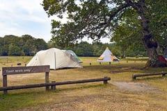 Tiendas de campaña y tienda de los indios norteamericanos en un camping debajo de los árboles imagen de archivo libre de regalías