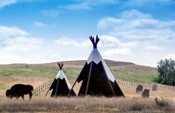 Tiendas de los indios norteamericanos y búfalo para los turistas Imagenes de archivo