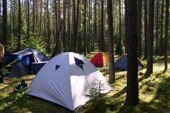 Tiendas en el bosque Foto de archivo libre de regalías