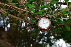 ¿Tiene usted medir el tiempo? Imagenes de archivo