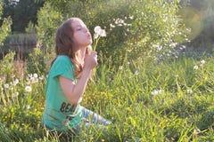 Tiener blazende zaden van een paardebloembloem in een de lentepark Royalty-vrije Stock Afbeeldingen