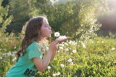 Tiener blazende zaden van een paardebloembloem in een de lentepark Stock Afbeeldingen