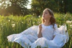 Tiener blazende zaden van een paardebloembloem in een de lentepark Royalty-vrije Stock Afbeelding