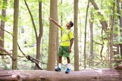 Tiener bovenop Gevallen Boom in Forest Preserve Pointing aan iets stock afbeelding