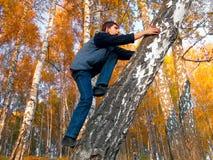 Tiener in de herfstbos Stock Fotografie