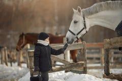 Tiener die zich dichtbij wit paard in een paddock bevinden stock afbeeldingen