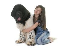 Tiener en de hond van Newfoundland Stock Afbeeldingen
