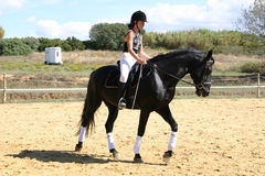Tiener en paard Stock Fotografie