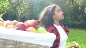 Tiener jonge vrouw die een appel eten door een mand van geplukte appelen in een zonnige boomgaard stock footage