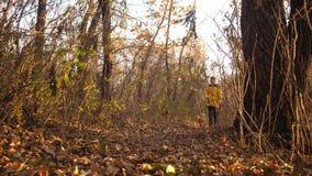 Tienergangen met hond langs weg met de herfstbladeren dat wordt uitgestrooid Langzame Motie stock videobeelden