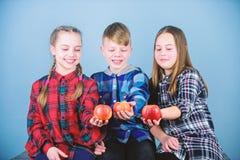 Tienerjaren met gezonde snack Gezonde het op dieet zijn en vitaminevoeding Eet fruit en ben gezond Het bevorderen van gezonde voe stock foto