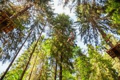Tienerjongen op een kabelscursus in een treetop avonturenpark die zipline overgaan royalty-vrije stock foto