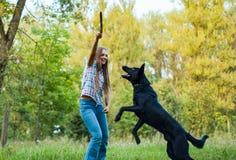 Tienerspel met een herdershond in het park openlucht stock foto's