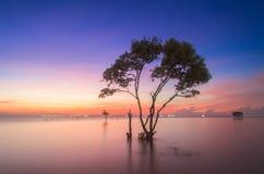 Tiengiang Vietnam lizenzfreies stockfoto
