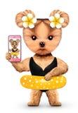 Tier, das selfie im Bikini und im Schwimmring nimmt Lizenzfreie Stockbilder