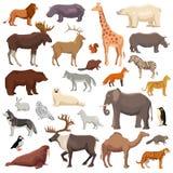 Tier-großer Satz lizenzfreie abbildung
