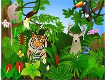 Tier im Dschungel Stockfotos