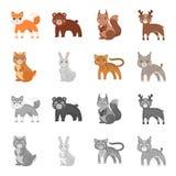 Tier-, inländische, wilde und anderenetzikone in der Karikatur, einfarbige Art Zoo, Spielwaren, Kinder, Ikonen in der Satzsammlun Lizenzfreies Stockfoto